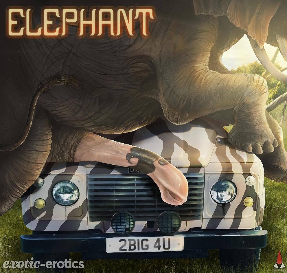https://www.exotic-erotics.com/store/images/products/ElephantMini_01.jpg